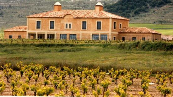 Bodega familiar en Ribera del Duero. Alonso del Yerro