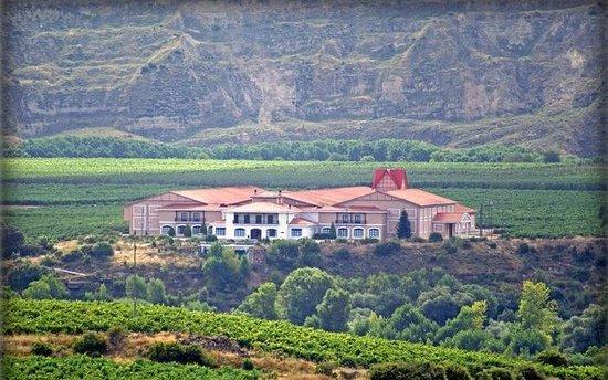 Bodega familiar en La Rioja. Finca Valpiedra